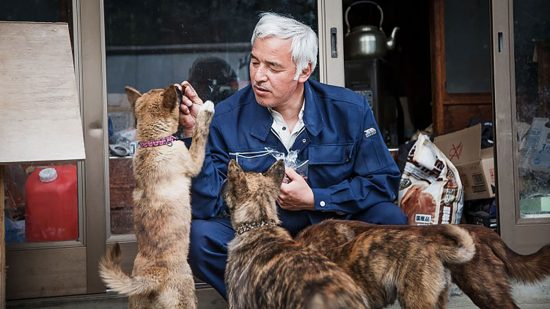 Where Have All of Fukushima's Animal Rescuers Gone?